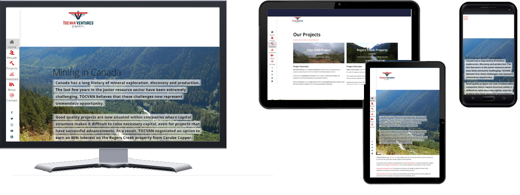 Tocvan-Ventures-2019-portfolio